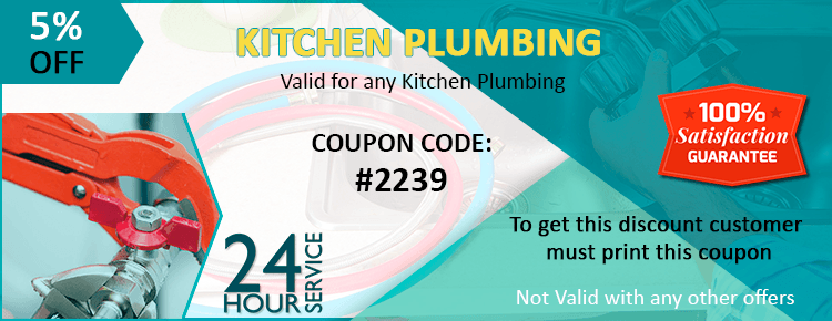 Kitchn Plumbing Coupon
